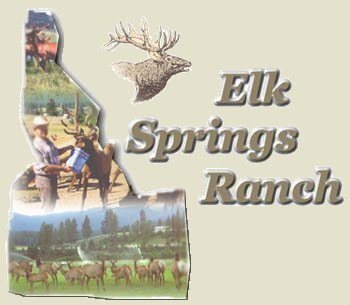 Elk Springs Ranch - View and Feed the Elk